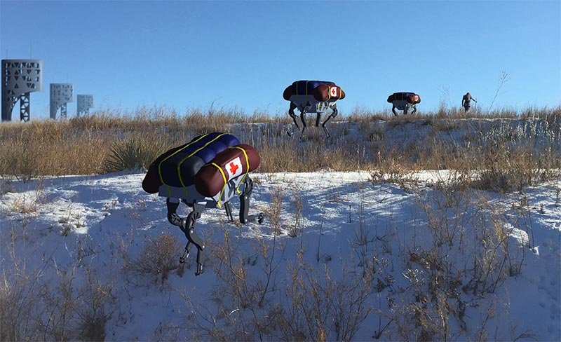 Robot Mules laden with relief supplies